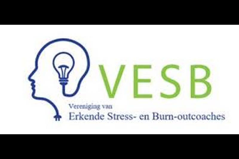 Logo VESB