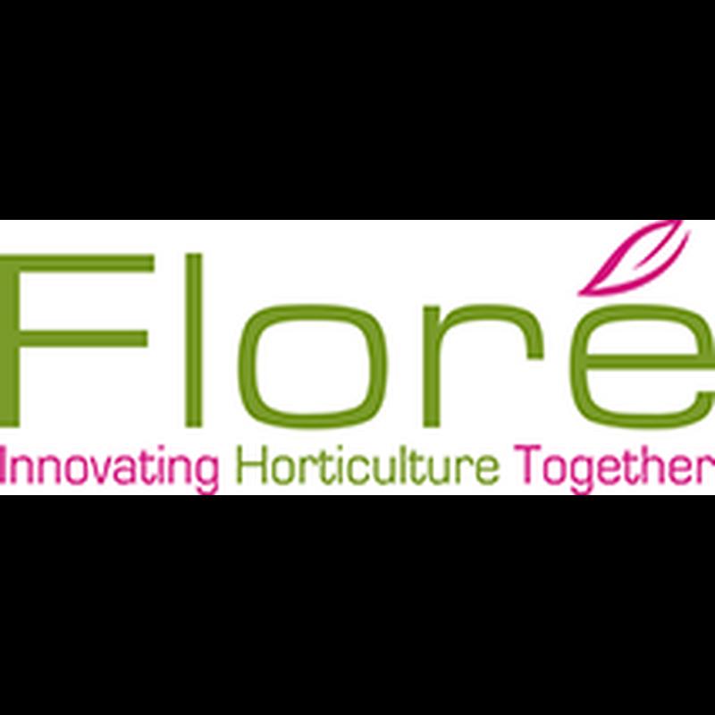 Logo flore