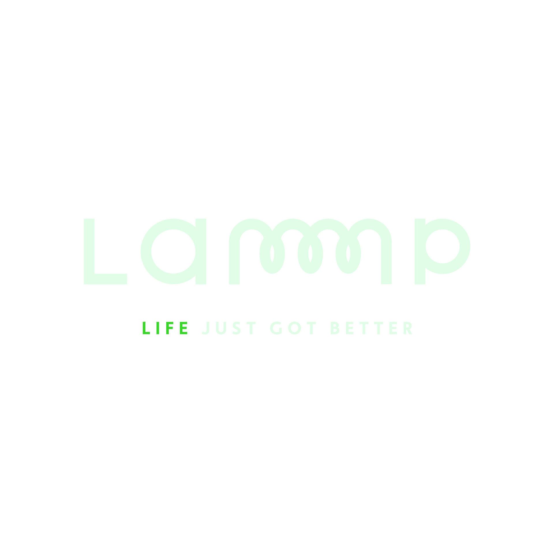 Copy of LAMMP RGB kleur